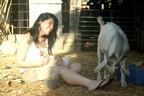 נפתחה חוות השחרור לבעלי חיים שניצלו מתעשיית המזון ומהתעללות