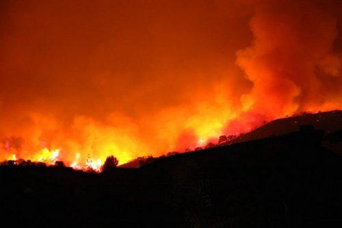 השריפות בקליפורניה: מבט לעולם שנשלט על ידי ההון
